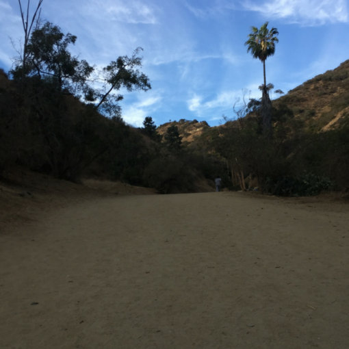 best hiking trails los angeles