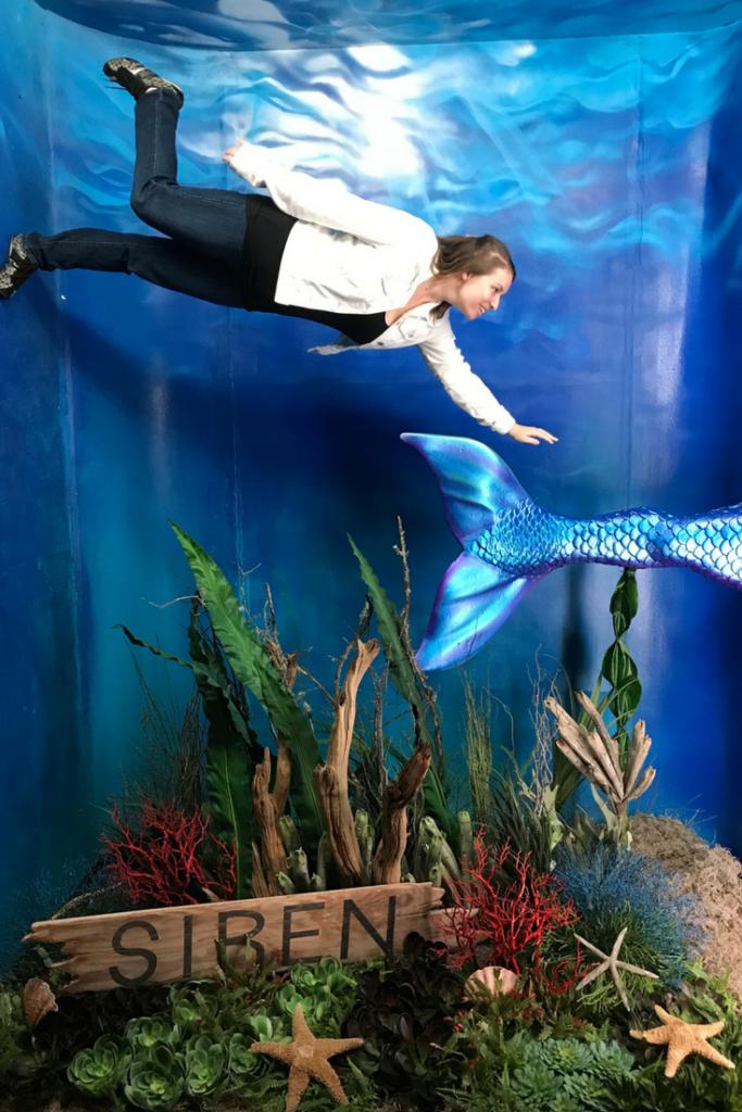 mermaid museum in hollywood