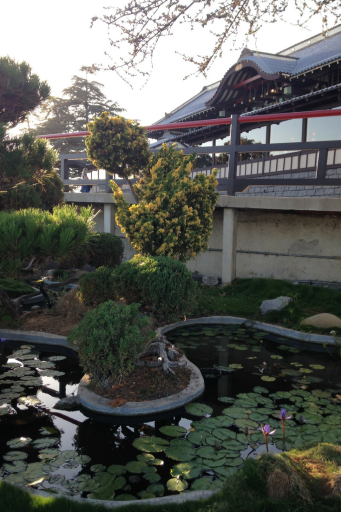 Yamashiro Hollywood restaurant