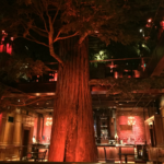 clifton's cafeteria downtown los angeles