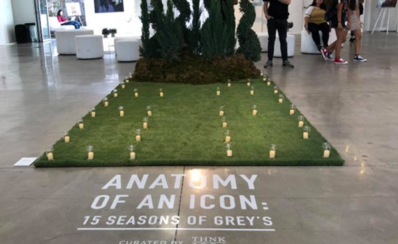 the grey's anatomy Gallery exhibit