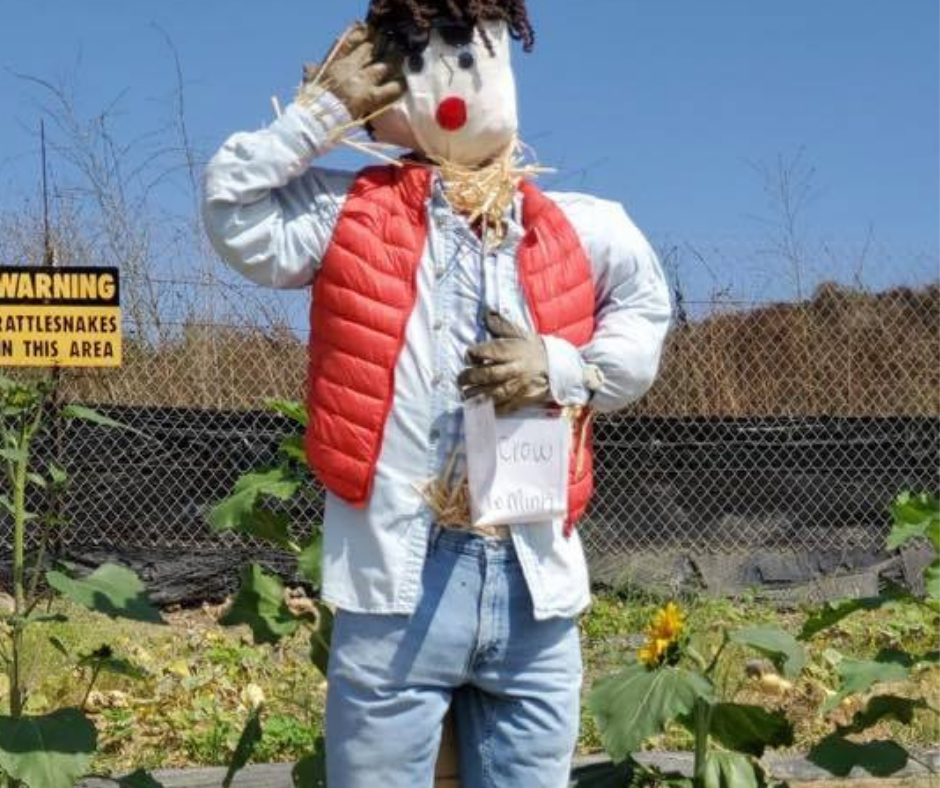 marty mcfly scarecrow